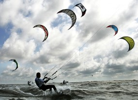 Find out more information on the Lowcountry Active Outdoors Expo.