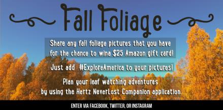 FallFoliage-06
